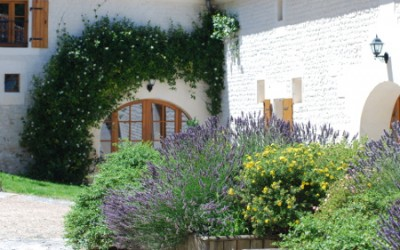 Charming Guesthouse in the vineyard of Cognac