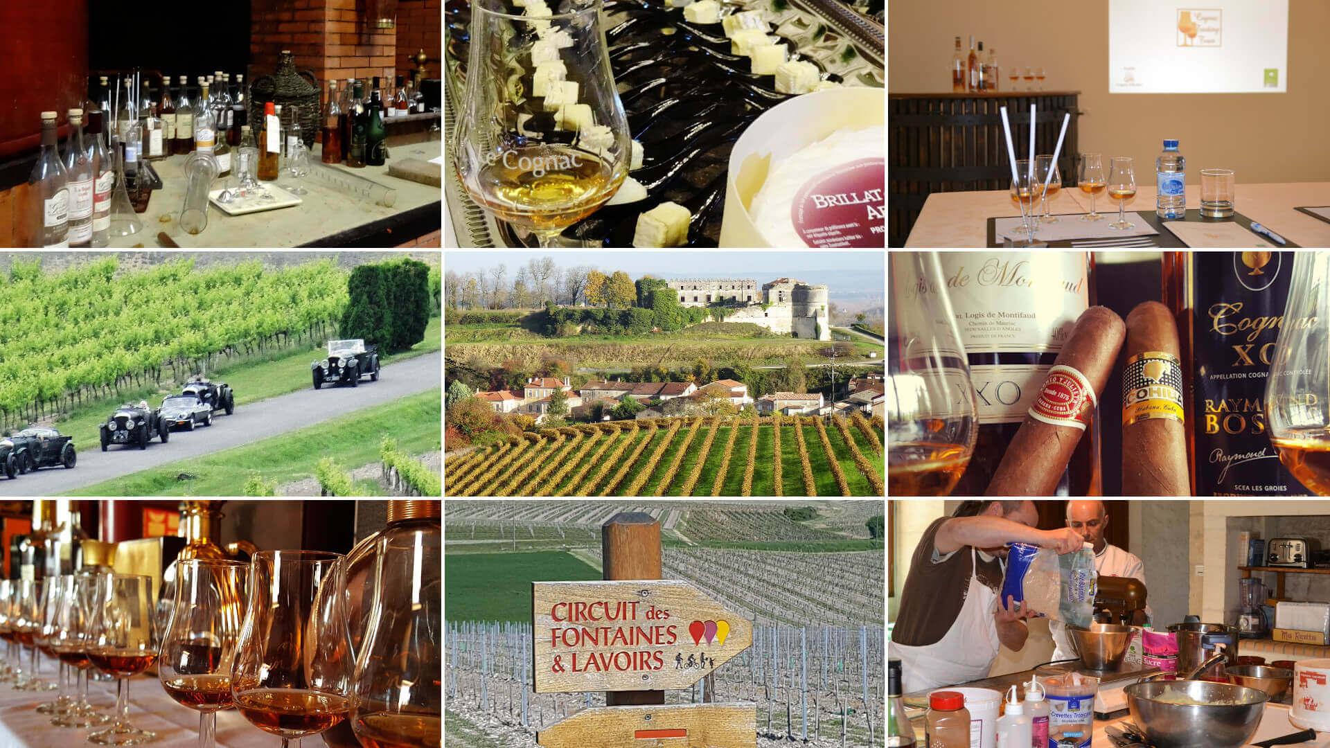 Un large choix d'activités en Charente et au pays du cognac pour un séjour original