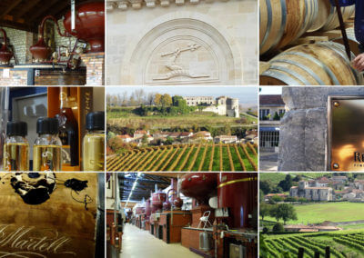 Tailored made excursions in Charente and in the vineyard of cognac