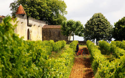 Between Charente and vineyards, bike and canoe ride