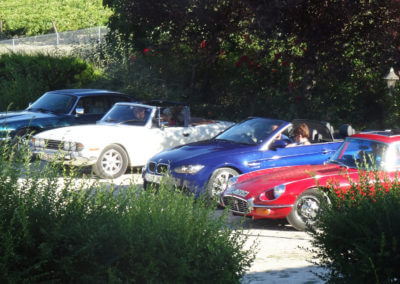 A classic car owner's club on tour in Charente with a stopover in the Cognac vineyards