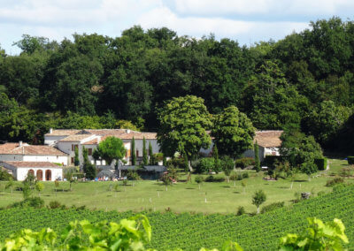 Charming guest house nestled in the Cognac vineyards