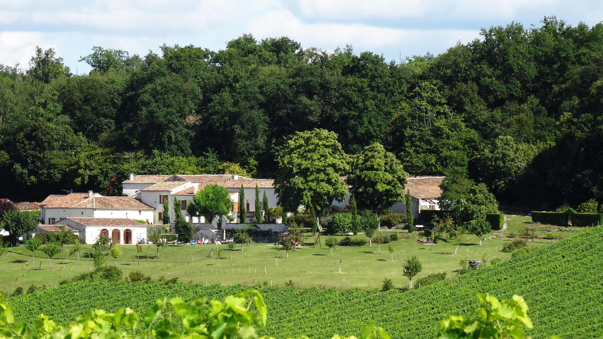 Demeure d'hôtes dans les vignes