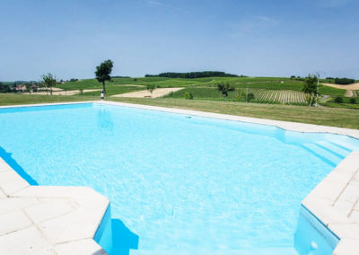 The swimming pool facing the cognac vines of a charming residence